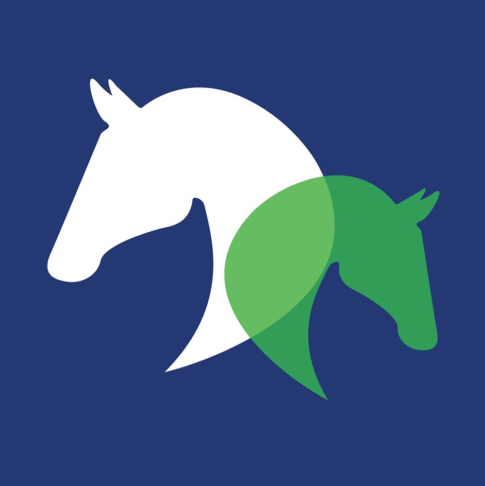 paarden dierenarts